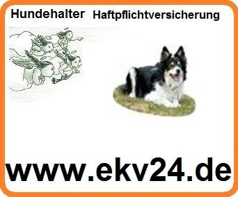 Hund, Hunde Hundehalter Haftpflicht Versicherung online vergleichen,http://www.online-versicherungs-vergleiche.de/Hund.html