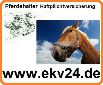 Pferd,Pferd Pferdehalter Haftpflicht Versicherung online vergleichen, § 833 BGB,http://www.online-versicherungs-vergleiche.de/Pferd.html